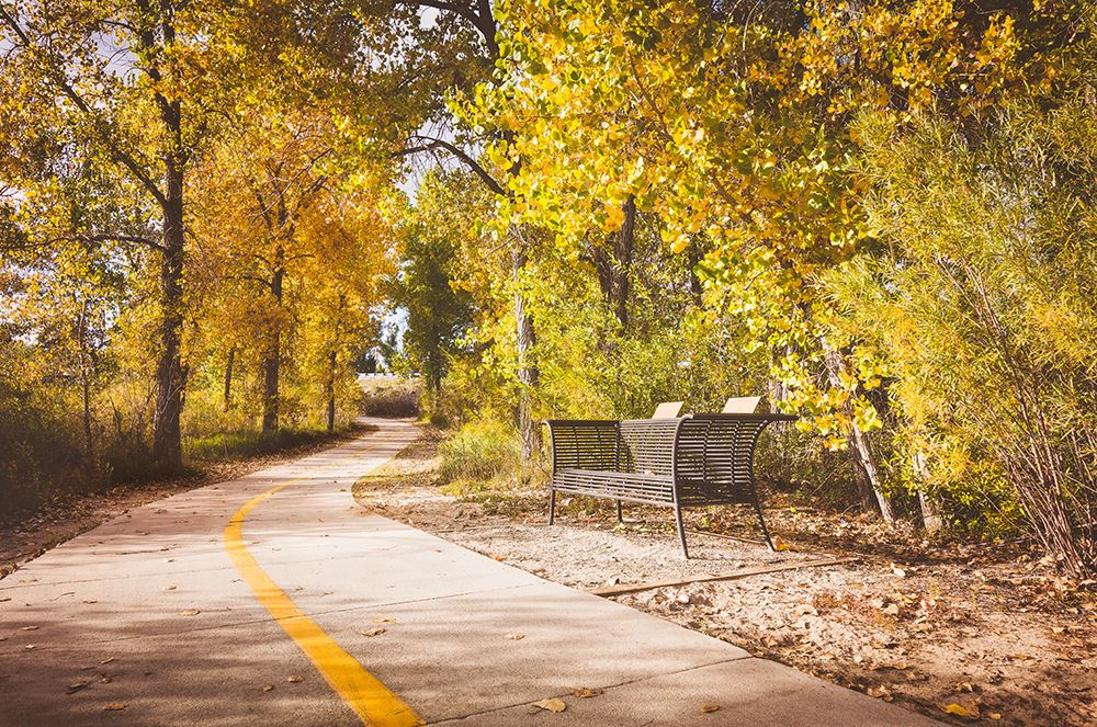 Early Fall on Cherry Creek Trail