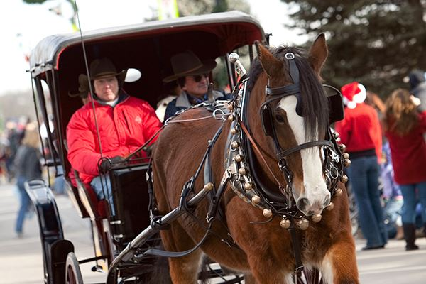 Christmas Carriage Parade - Horse and Buggy