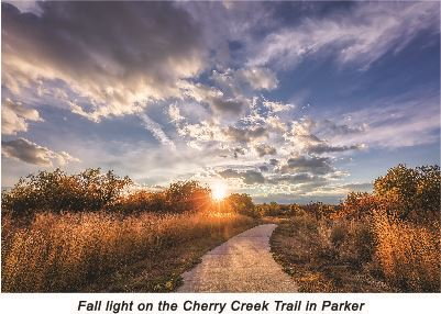 Cherry Creek Trail Landscape